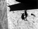 la sombra le guia