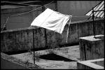 tejados de Cadiz bw